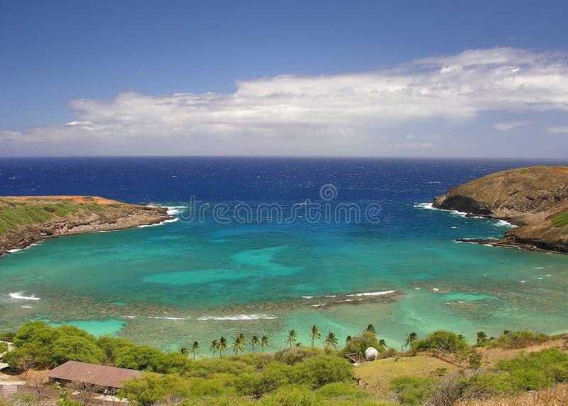 海湾hanauma晴朗的夏威夷 库存照片