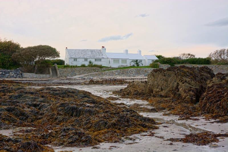 海滨与海草被盖的岩石的海滩物产 免版税库存图片