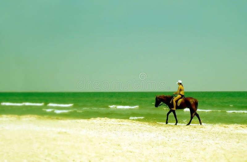 海滩乘驾 库存图片