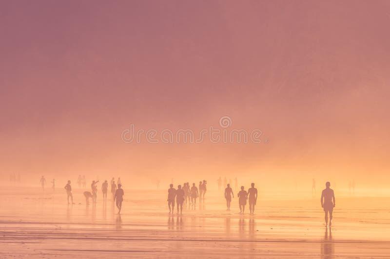 海滩人走 库存照片