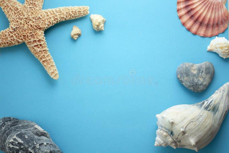 海滩假日题材构成 向量例证
