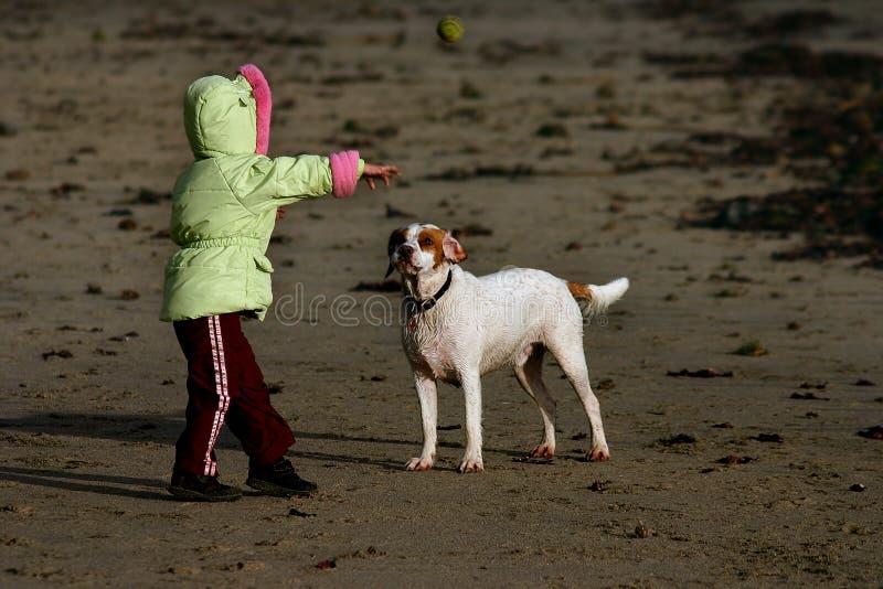 海滩儿童狗取指令他使用 免版税库存图片