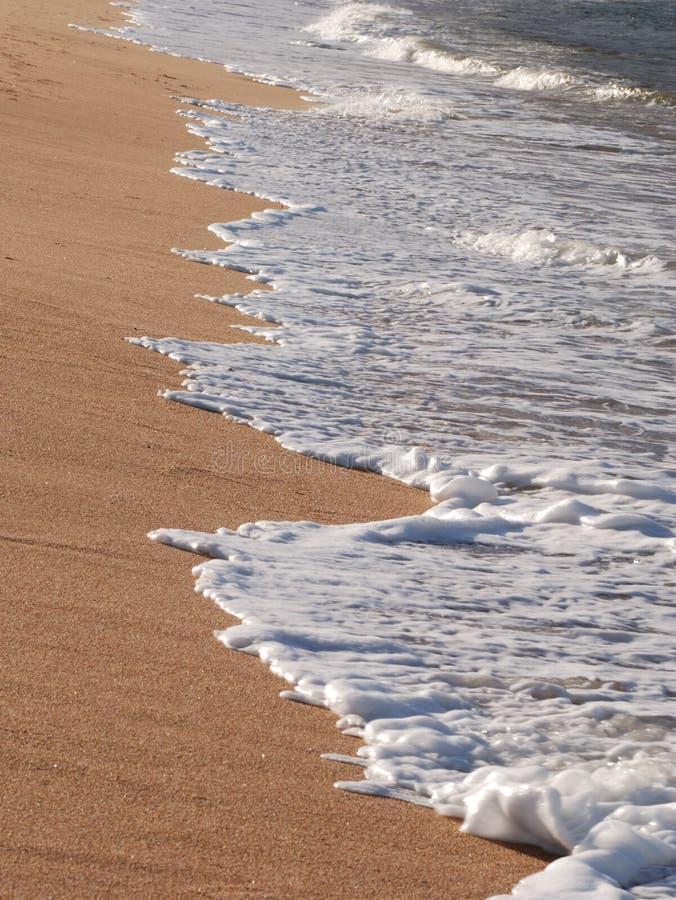 海滩充分的光 图库摄影