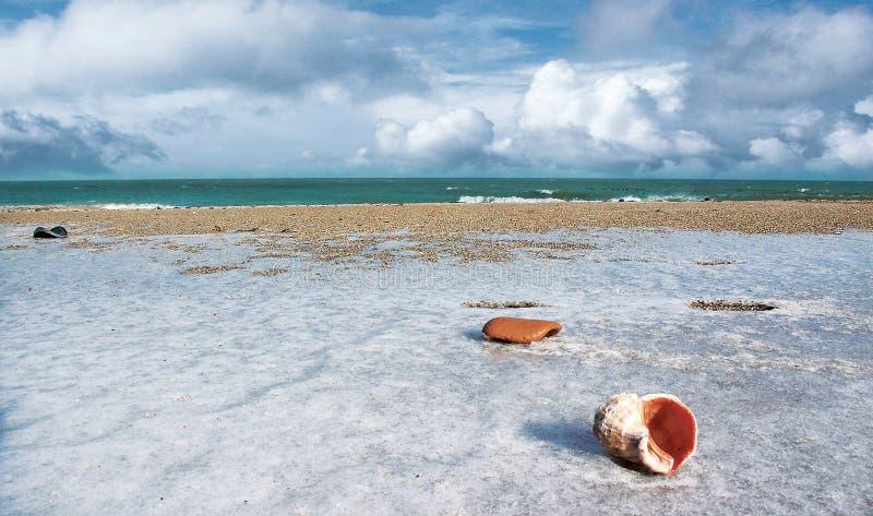 海滩冻结 免版税图库摄影