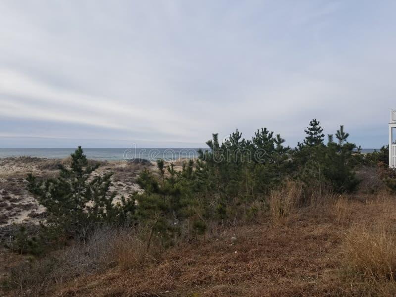 海滩前面 图库摄影