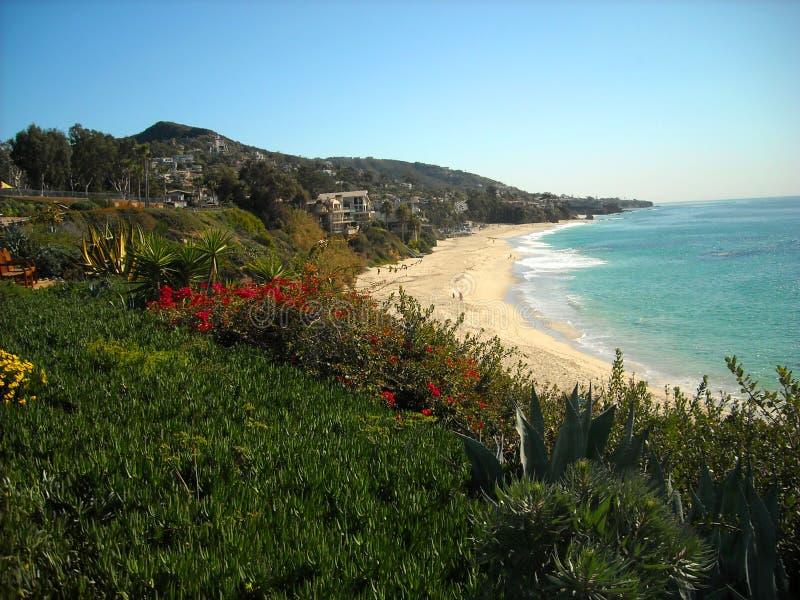 海滩加利福尼亚拉古纳 库存图片