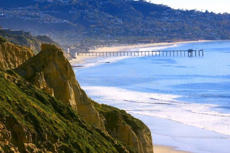 海滩加利福尼亚杉木南部的torrey 免版税库存照片