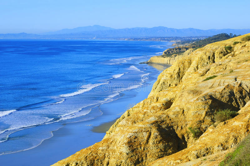 海滩加利福尼亚杉木南部的torrey 图库摄影