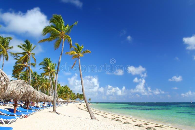 海滩加勒比椅子手段伞 库存图片