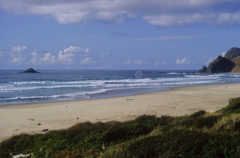 海滩北部俄勒冈 免版税库存图片