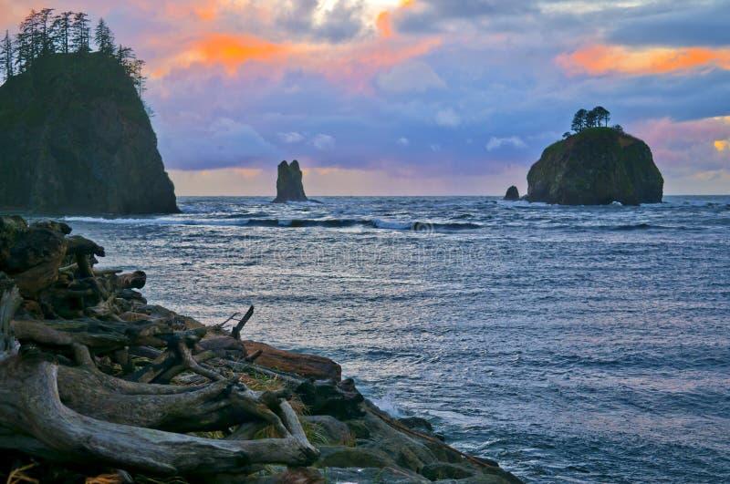 海滩叉子la推进华盛顿 免版税图库摄影
