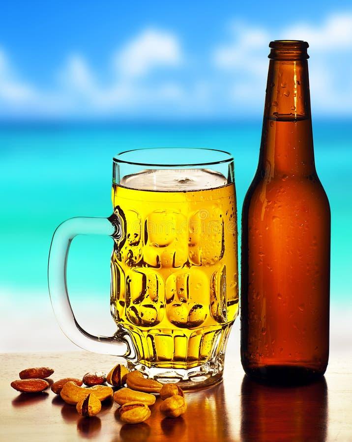 海滩啤酒寒冷 免版税图库摄影