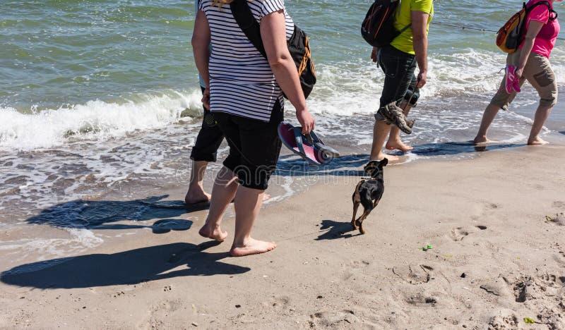 海滩在傲德萨 免版税库存图片