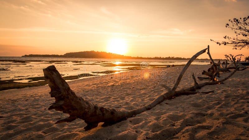 海滩在印度尼西亚 库存图片