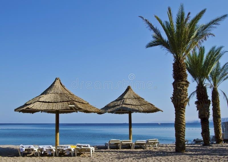 沙子在旅馆海滩附近的eilat手段以色列.黑风衣美女图片