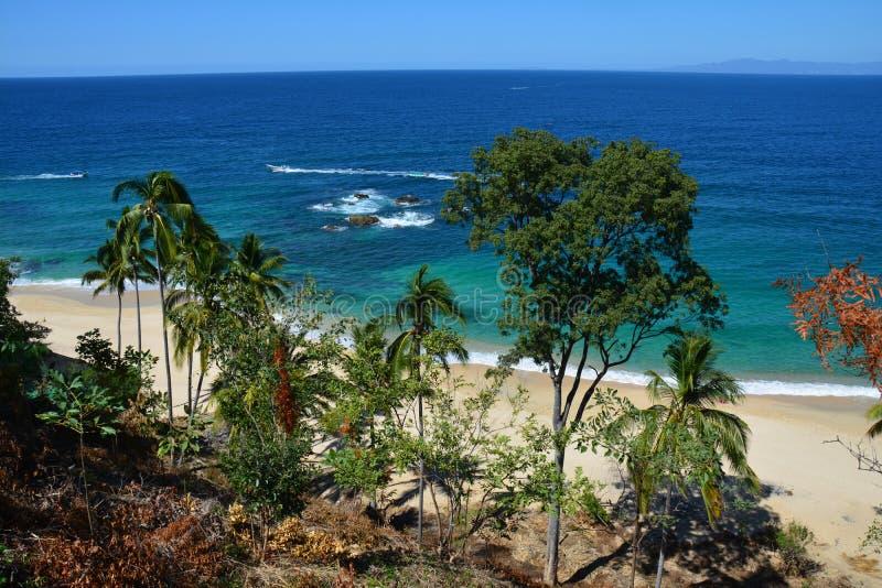 海滩在普埃尔托巴利亚塔哈利斯科州墨西哥 免版税库存图片