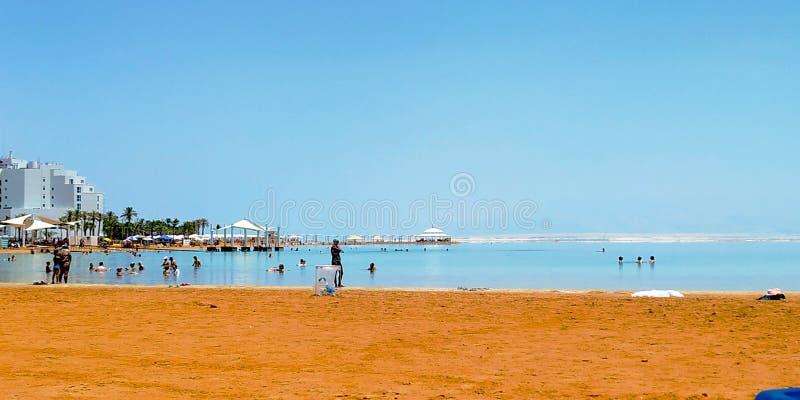 海滩在死海,以色列 库存图片