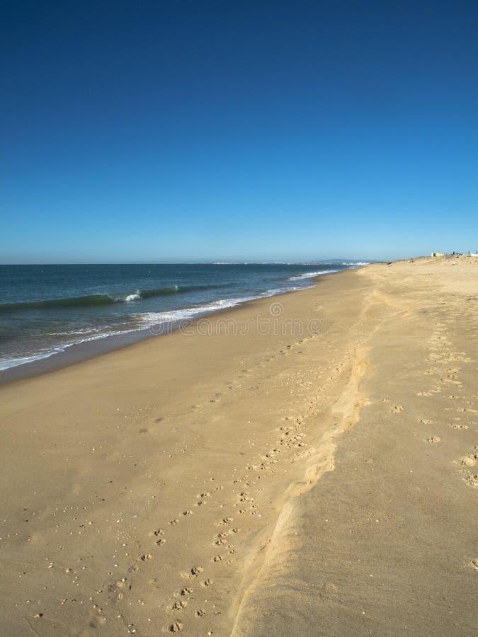 海滩在阿尔加威葡萄牙 库存照片