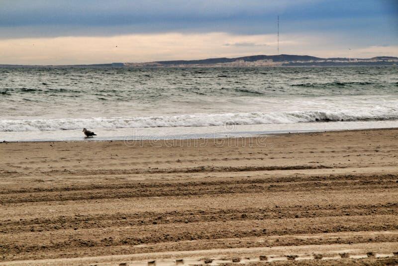 海滩在风雨如磐的天空下 库存照片
