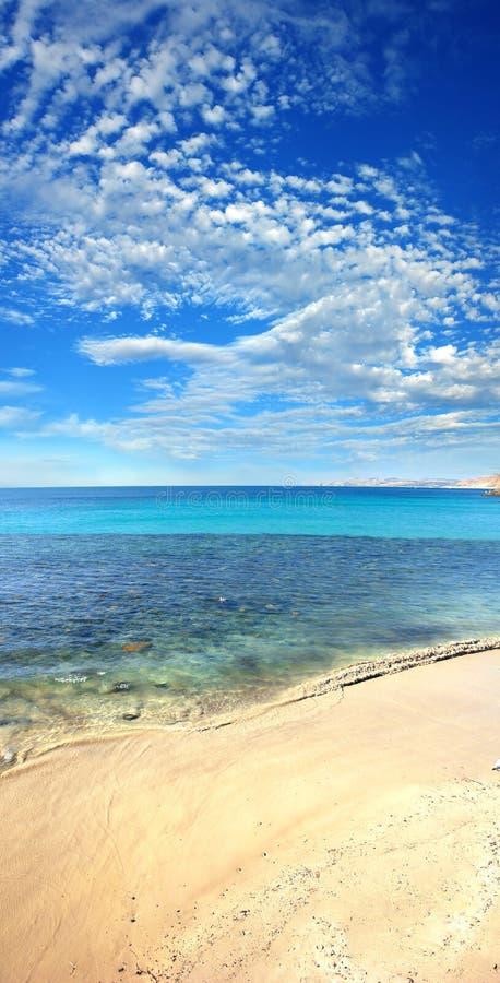 海滩垂直 免版税图库摄影