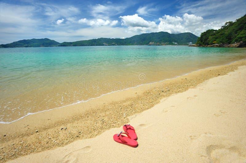 海滩塑胶人字平底拖鞋 库存图片
