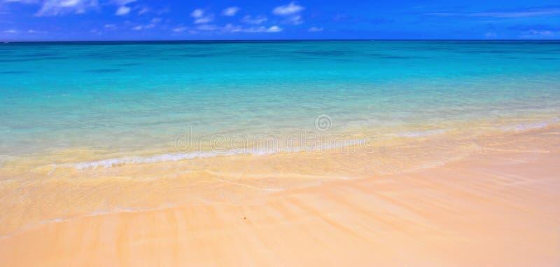 海滩夏威夷人奥阿胡岛 免版税库存图片