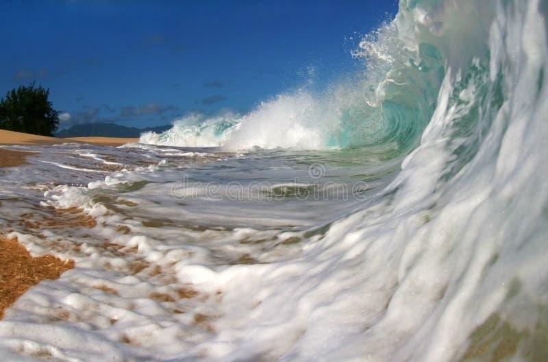 海滩夏威夷海浪 免版税图库摄影