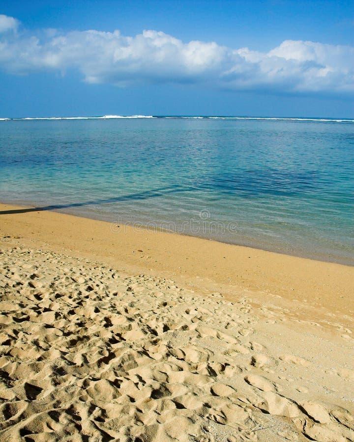 海滩夏威夷热带的考艾岛 免版税图库摄影
