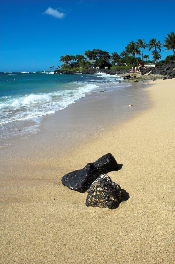 海滩夏威夷考艾岛 库存图片