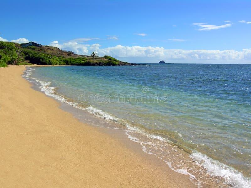 海滩夏威夷Molokai waialua 库存图片