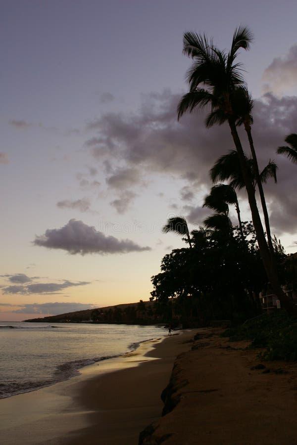 海滩夏威夷waikiki 图库摄影