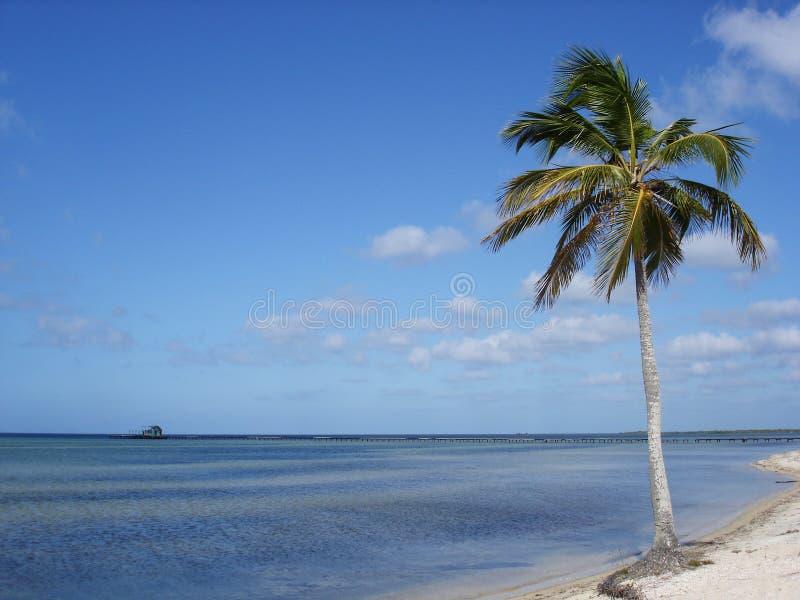 海滩天堂 库存照片