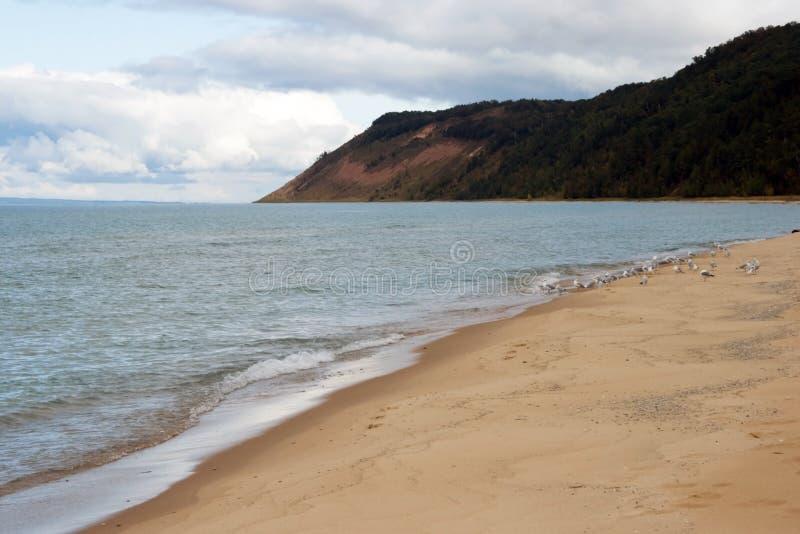 海滩密执安湖 库存图片