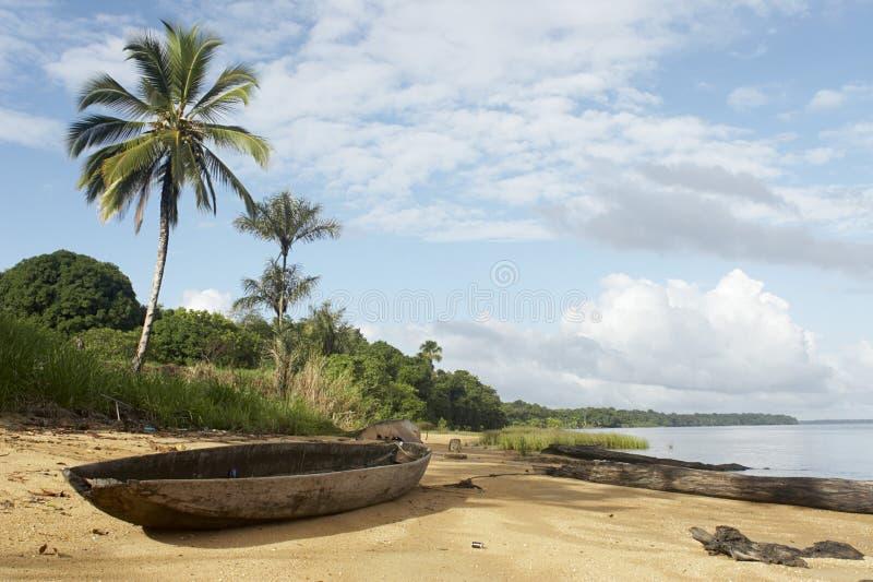 海滩密林 图库摄影