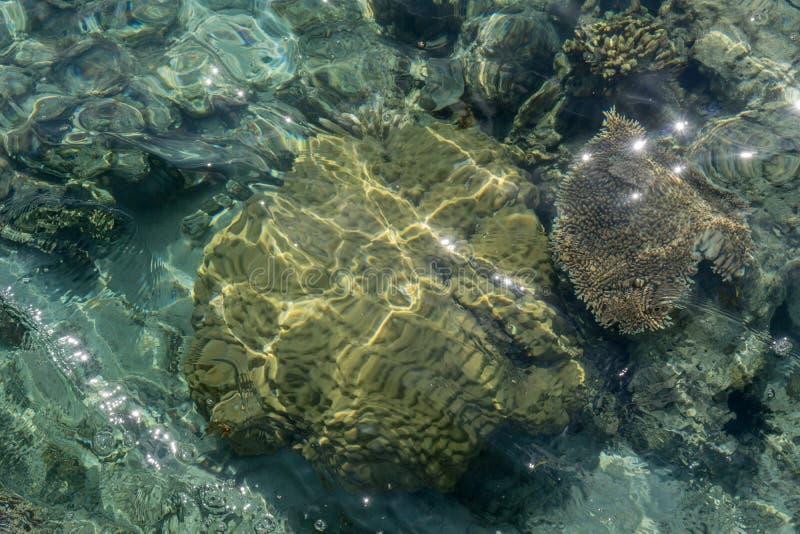 海滩巴韦安岛, Gresik,印度尼西亚 库存照片