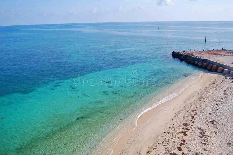 海滩干燥tortugas 库存图片