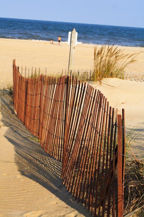 海滩弗吉尼亚 库存图片