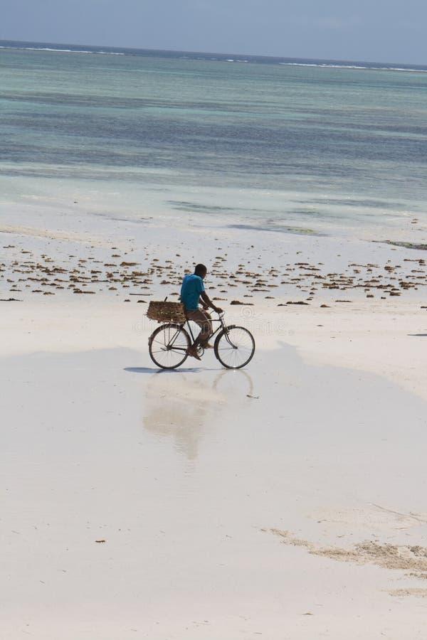 海滩循环 库存照片