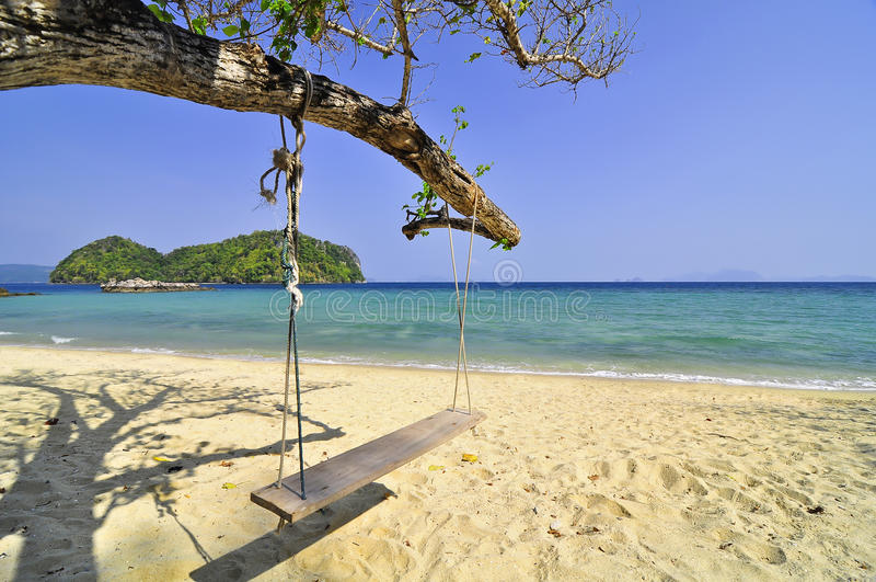 海滩摇摆结构树 库存图片
