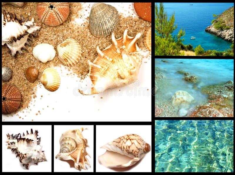 海滩收集节假日 图库摄影