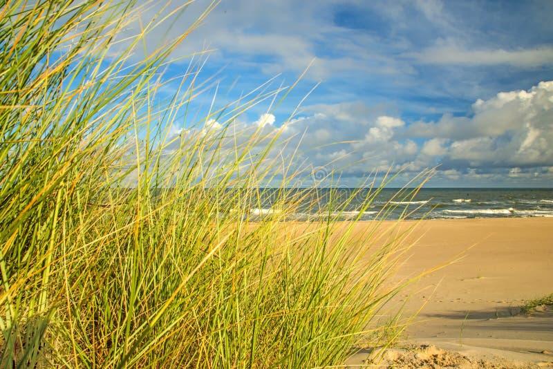 海滩有海滩草的波罗的海 免版税库存图片