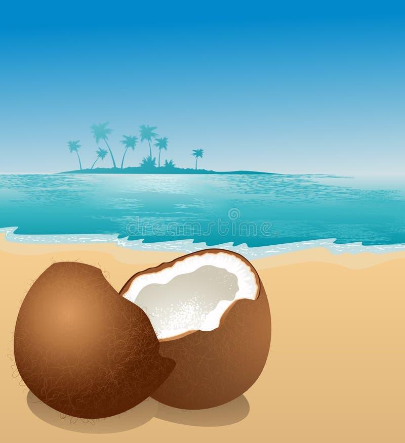 海滩椰子 向量例证