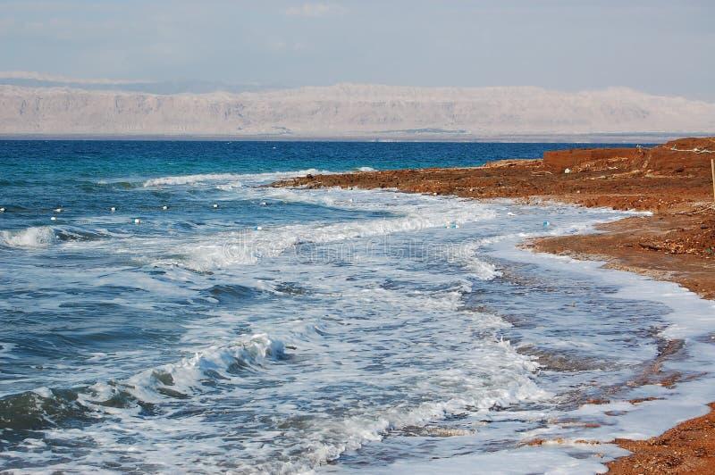 海滩死海 库存照片