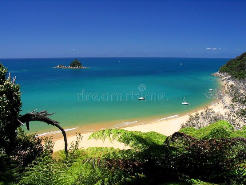 海滩水晶水 免版税库存图片