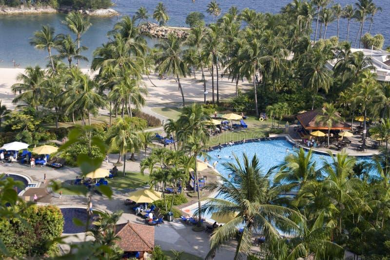 海滩池 免版税库存照片