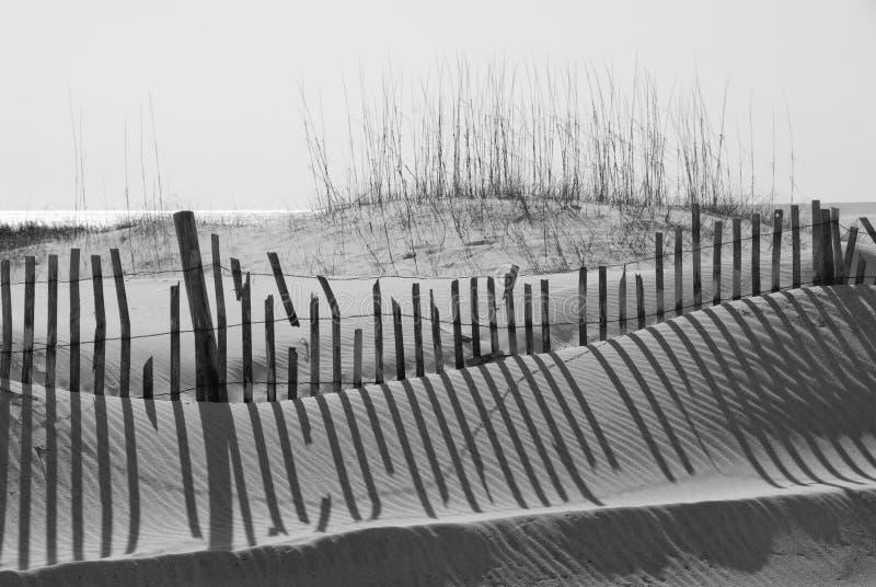 海滩沙丘沙子 免版税库存照片