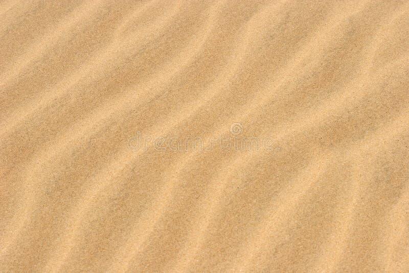 海滩沙子 免版税库存图片