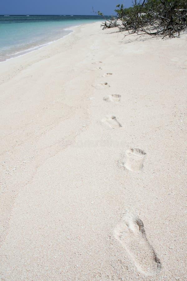 海滩沙漠脚印海岛沙子白色 图库摄影