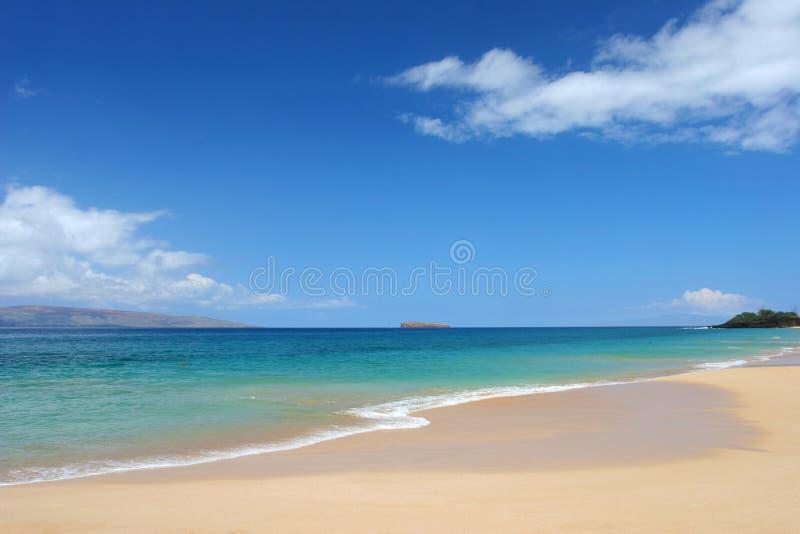 海滩洁净热带 库存图片