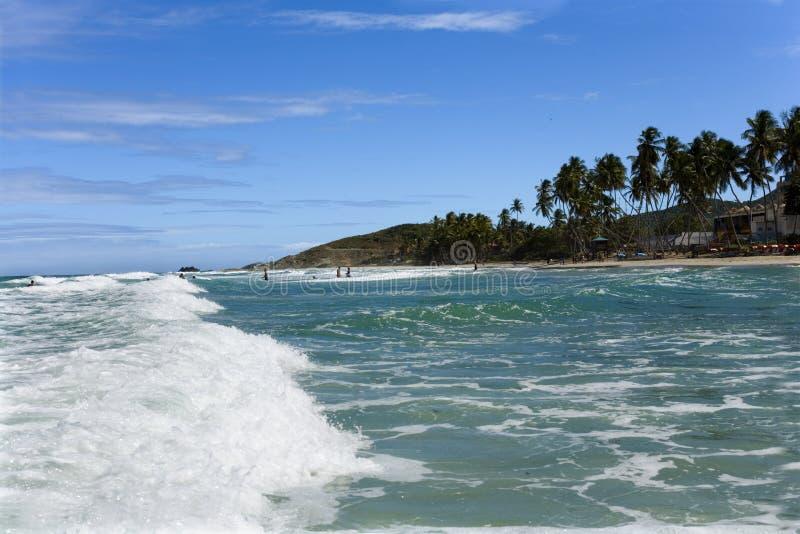 海滩海岛玛格丽塔酒 免版税图库摄影